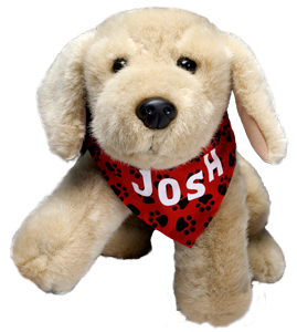 Josh Toy
